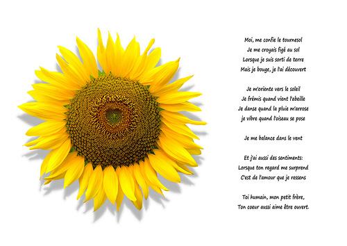 Признание: стихи о любви